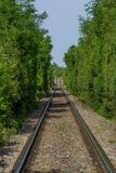 Long old railway in the forest Royalty Free Stock Photography