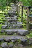 Long outdoor staircase royalty free stock images