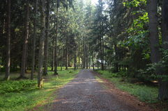 A Long Path Royalty Free Stock Images