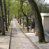 Long paved alley - Pere Lachaise cemetery Stock Photography