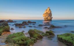 Long paysage marin d'exposition Images libres de droits