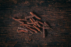 Long Pepper dry on wood background. Stock Photos
