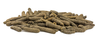 Long pepper Royalty Free Stock Photography