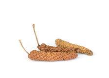 Long Pepper  . Stock Photography