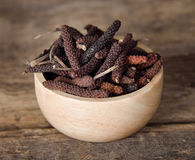 Long pepper or Piper longum Royalty Free Stock Images