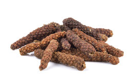 Long pepper on white background Stock Image