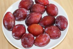 Long plums on white plate stock image