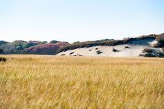 Long Point Marsh, Massachusetts, National Seashore, Stock Image