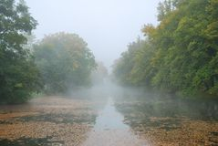 Long pond and forest park trees in fog Royalty Free Stock Photo