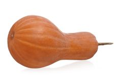 Long pumpkin Royalty Free Stock Image