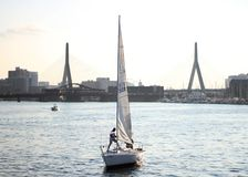 Long range shot of a caucasian male standing on a sailboat getting ready to take off royalty free stock photos