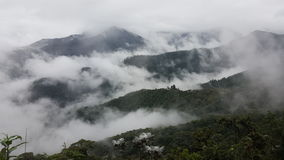 Long range view of cloudforest Stock Photo