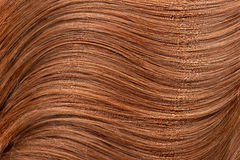 Long red human shiny hair Stock Images