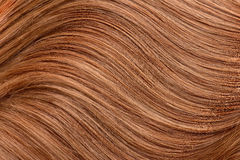Long red human shiny hair Stock Image