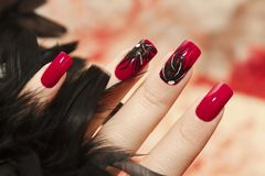 Long red nails. Long red nails with design of black feathers on female hand close up Stock Image