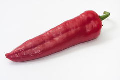 Long red paprika on the white background Stock Photography