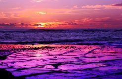 Long Reef Purple Sunrise Stock Image