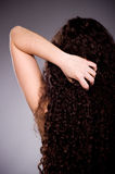 long ringlets hair Royalty Free Stock Photo