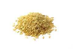 Long riz Image libre de droits