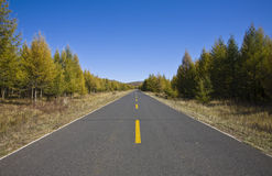 Long road. A long country road spreads to the sky in the north of china Stock Images
