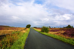 Long road ahead Stock Image