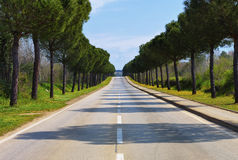 Long Road Ahead. A long paved road leading into distance to the unknown Royalty Free Stock Images