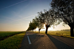 The Long Road. Early morning light on a rural country road Royalty Free Stock Image