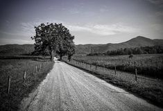 The long road home. Black and white Gravel road with fence on each side and and lone tree with mountains in the back ground with vignette Stock Images