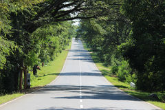 Long Road Home Royalty Free Stock Image
