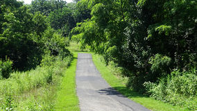 Long road surrounded by green landscape. Royalty Free Stock Photography
