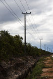 Long road to find near city. Electricity pole march in West Sumatra Island Royalty Free Stock Photography