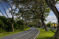 Long road to home Royalty Free Stock Photography