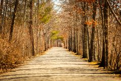 Long Road to Nowhere stock image