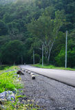 Long road between tree nature mountain Stock Image