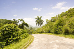 Long road or way among exhuberant vegetation in tropical country Stock Photo