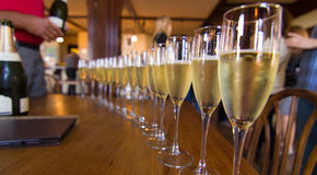 Long row of Champagne flutes Stock Images