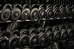 Row of Hand Barbells. A long row of weight training equipment or hand barbells in a gym. Dark, strong and tough Stock Image