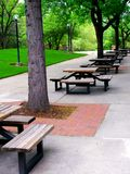 Long rows of outdoor picnic or lunch tables. Beneath leafy green trees and stretching into the distance Stock Photo