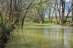 Long Run Creek Royalty Free Stock Photo