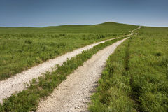 Long rural country road through tall grass pasture Royalty Free Stock Images