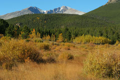Long's Peak, autumn foliage Royalty Free Stock Image
