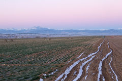 Long's Peak and a Pivot Irrigation System. Along the plains of Colorado royalty free stock photo