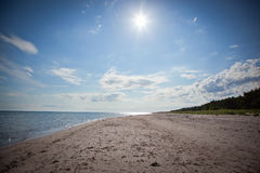 Long sand beach on the island of faro in sweden Royalty Free Stock Image