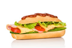 Long sandwich Stock Photography