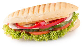 Long sandwich isolated on a white background Royalty Free Stock Photo