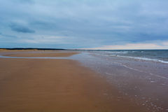 Long sandy beach and forest in the distance, Northern Sea, Holkham beach, United Kingdom Stock Image