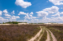 Long sandy path in a colorful rural landscape Royalty Free Stock Photography