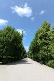 Long sentier piéton entre les arbres Photos stock