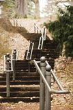Long Set Of Stairs Going Through The Forest In Highland Park Rochester, New York Stock Image