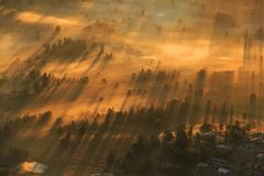 Long Shadow of Golden glow of morning over mist